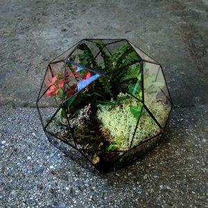 Флорариум «Лес в шаре»